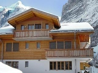 1 bedroom Apartment with Internet Access in Grindelwald - Grindelwald vacation rentals