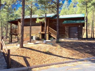 Beautiful Cottage with Internet Access and A/C - Show Low vacation rentals