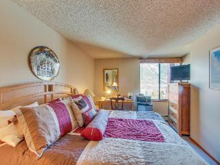Mountain-view escape close to lifts w/hot tub & sauna! - Copper Mountain vacation rentals