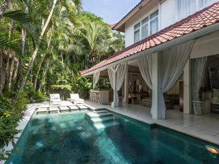 A Fusion of Elegant Villa Close Seminyak - Seminyak vacation rentals