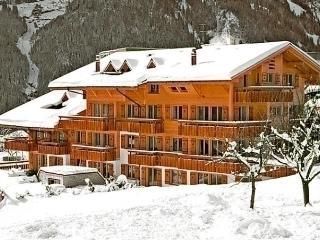 Wonderful 1 bedroom Vacation Rental in Grindelwald - Grindelwald vacation rentals