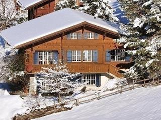Sunny 4 bedroom House in Lauterbrunnen with Internet Access - Lauterbrunnen vacation rentals