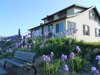 Cornfield Point Beachfront Cottage - Old Saybrook vacation rentals