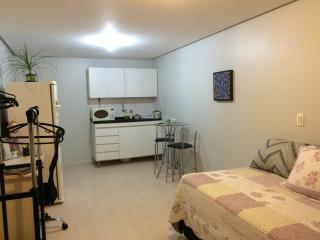 1 bedroom Condo with Microwave in Brasilia - Brasilia vacation rentals
