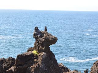 OCEAN - Casa do Cachorro - Madalena vacation rentals