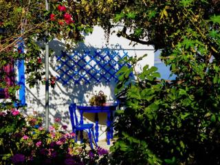 Romantic 1 bedroom Bungalow in Agios Kirykos - Agios Kirykos vacation rentals