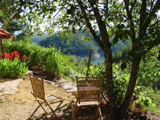 Cosy and Characterful Cottage with Lake View - Pedrogao Grande vacation rentals
