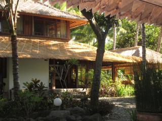 Nice Villa with Internet Access and Hot Tub - Tejakula vacation rentals