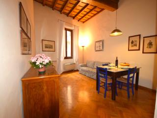 VIGNA, an elegant apartment near Dome - Florence vacation rentals