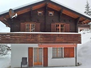 Beautiful 3 bedroom Gasenried House with Dishwasher - Gasenried vacation rentals