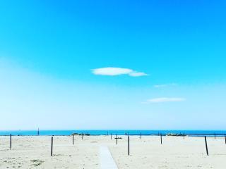 Apt. 500 metri dal mare - Marina Di Pietrasanta vacation rentals
