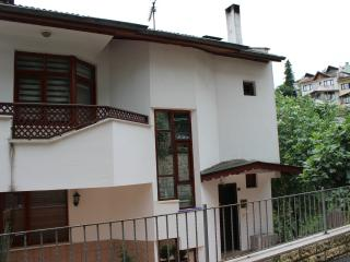 Bright 4 bedroom Villa in Trabzon with Internet Access - Trabzon vacation rentals