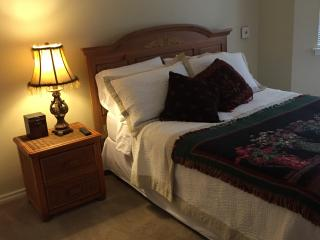 Cozy 2 bedroom Round Rock House with Internet Access - Round Rock vacation rentals