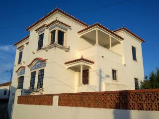 Nice 5 bedroom Villa in Rio Maior - Rio Maior vacation rentals