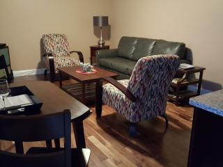 Luxury Condo - Downtown Traverse City - Traverse City vacation rentals