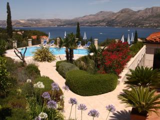 Studio apartment with pool - Cavtat vacation rentals