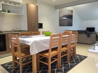Appart  n°6  Gites des Sablons - Chatillon-sur-Marne vacation rentals