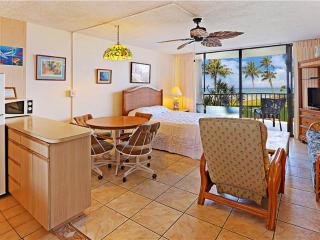 Cozy Lahaina Apartment rental with Internet Access - Lahaina vacation rentals