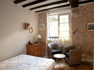 Amazing studio - Ile Saint Louis - Paris vacation rentals
