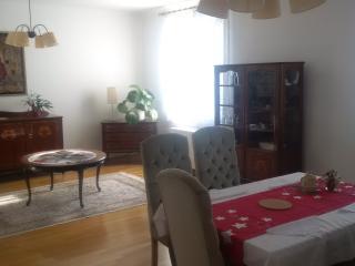 Belvedere Apartment - Vienna vacation rentals