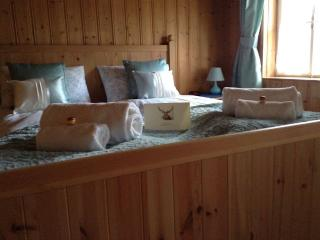 1 bedroom Apartment with Internet Access in Gosau - Gosau vacation rentals