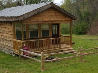 Sleepy Hollow Cabins/Ian's Getaway - Bryson City vacation rentals