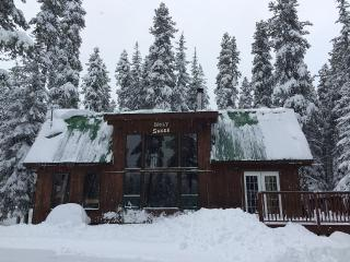 Apex Mt  Ski in/ Ski out cabin close to Penticton - Penticton vacation rentals