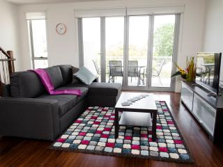 Bright 3 bedroom Williamstown Townhouse with A/C - Williamstown vacation rentals