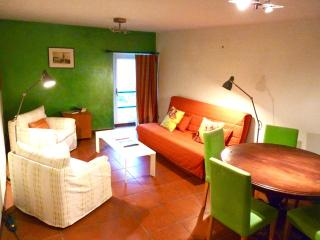 Spacious apartment with mountain view - Piteglio vacation rentals