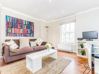 The Chelsea Gunter Light House - London vacation rentals