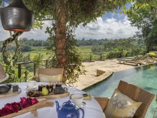 Villa Puri Sayan 4-5.5BR - Magical Valley View - Sayan vacation rentals
