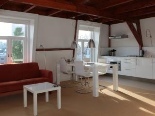 1 bedroom Condo with Central Heating in The Hague - The Hague vacation rentals