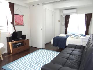 Luxury Apt Tokyo Ueno 2min Top FL/Wifi - Taito vacation rentals