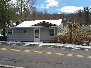 Cozy Cottage at Harvey's Lake near Ricketts Glenn - Harvey s Lake vacation rentals
