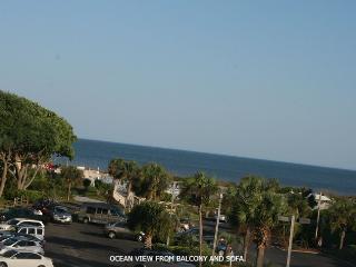 Fabulous Ocean condo, great ocean view, free WI-FI - Hilton Head vacation rentals