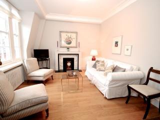 The Grosvenor Hideaway - London vacation rentals