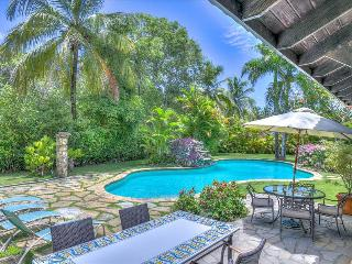 Villa Las Palmas - quintessential vacation home - Puerto Plata vacation rentals