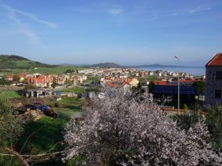 A House with Islands View - Ayvalik vacation rentals