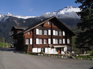 Ferienwohnung neu saniert und mit viel Charme - Grindelwald vacation rentals