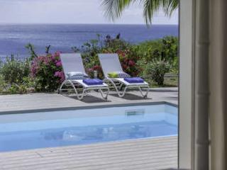 Perfect Villa with Internet Access and A/C - La Savane vacation rentals