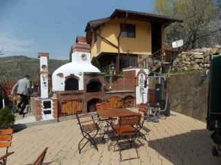 Spacious Villa with Central Heating and Television - Slanic vacation rentals