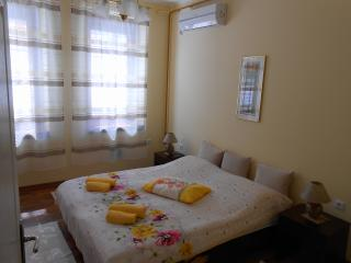 1 bedroom Apartment with Internet Access in Sarajevo - Sarajevo vacation rentals