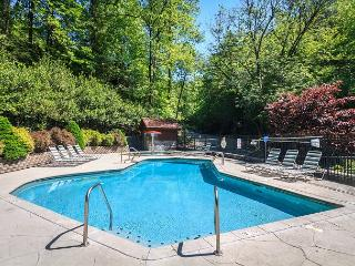 Beyond the Pond   Pool Access  Hot Tub  Pool Table  WiFi   Free Nights - Gatlinburg vacation rentals
