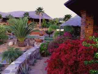 Nice 3 bedroom House in Valle de Guadalupe - Valle de Guadalupe vacation rentals