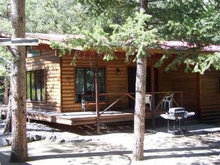 Canyon Cabin - Nathrop, near Buena Vista & Salida - Nathrop vacation rentals