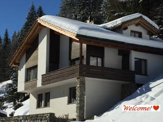 Family Chalet in a Breathtaking Setting in Kloster - Klosters Platz vacation rentals