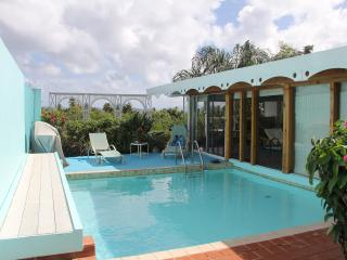 St Thomas - Villa with private pool-no car needed - East End vacation rentals