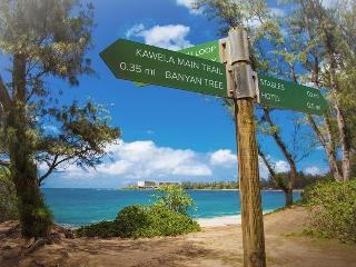 Prestine Turtle Bay Studio - Kahuku vacation rentals