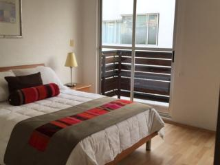 Comfortable 1 bedroom Condo in Mexico City with Elevator Access - Mexico City vacation rentals