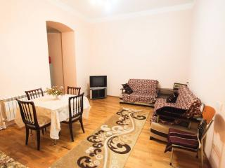 Cozy Condo with Internet Access and A/C - Baku vacation rentals